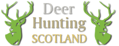 Deer Hunting Scotland